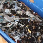 Vermicomposting bin