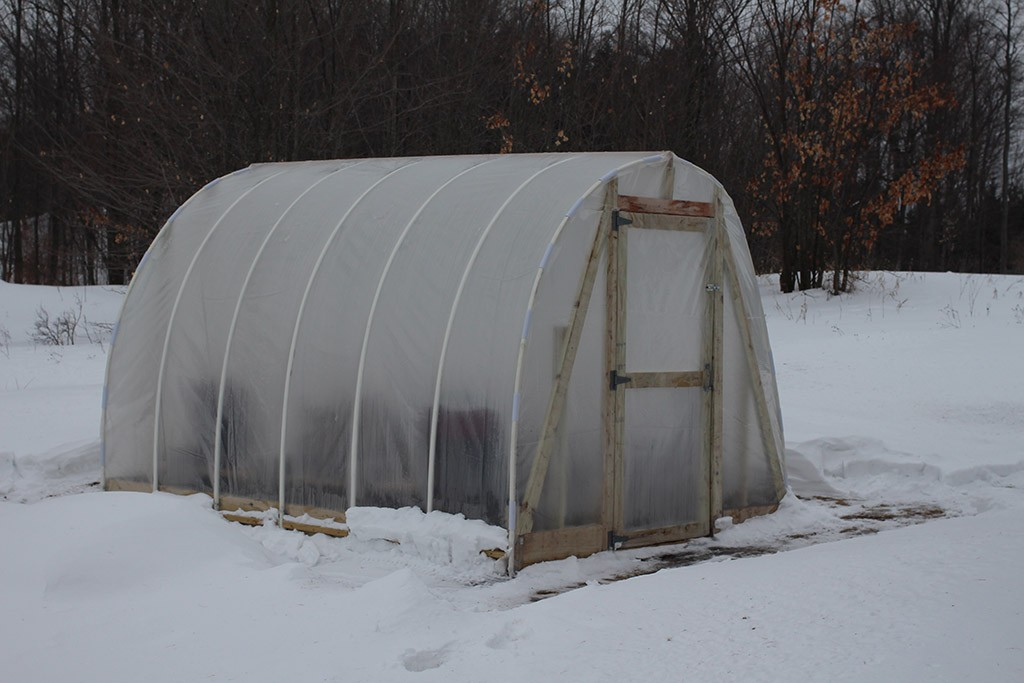winter DIY greenhouse