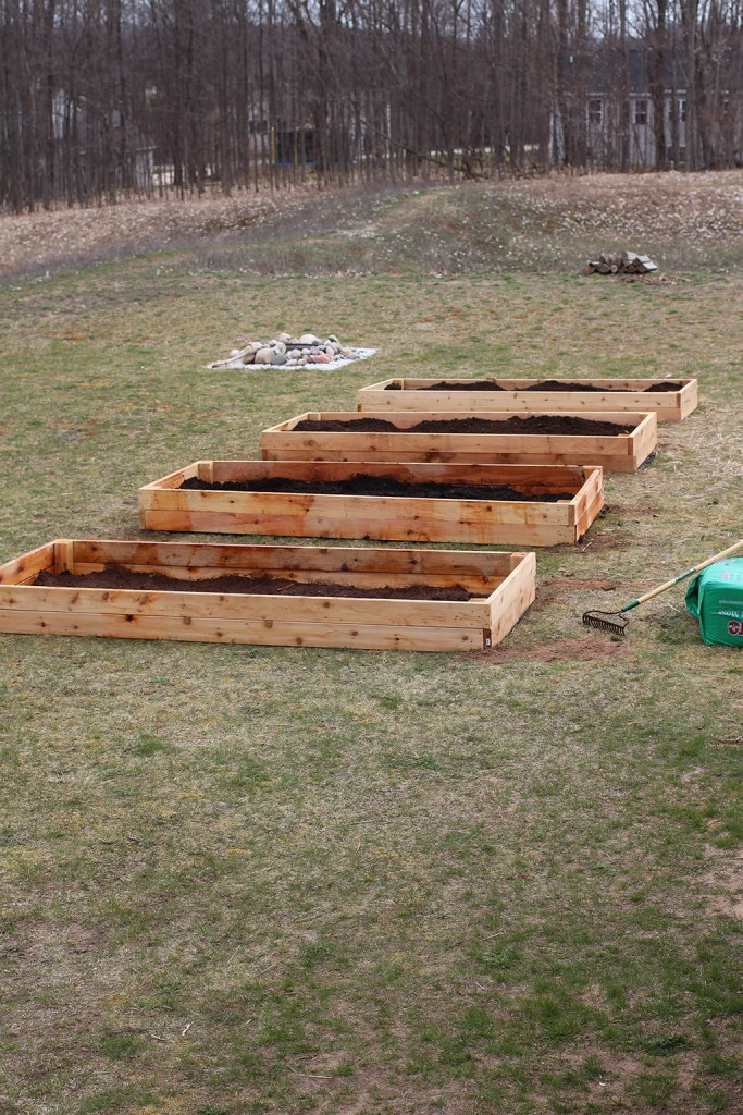 completed raised garden beds