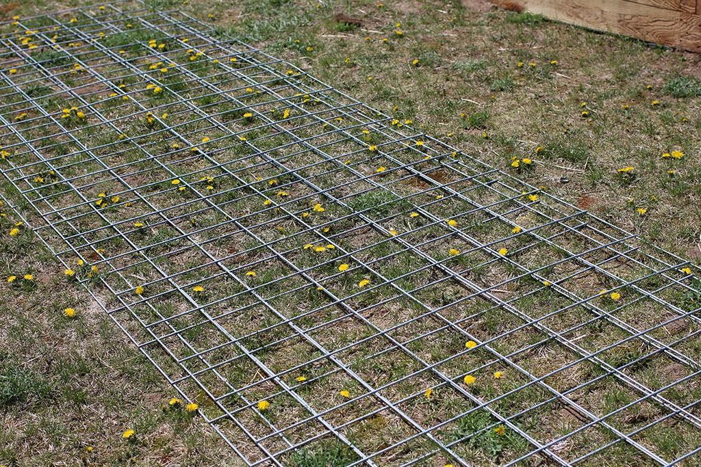 cattle panels for trellis
