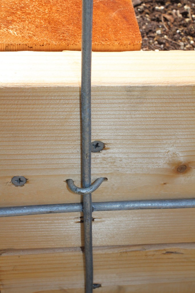 fence nails securing cattle panels